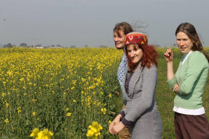 Photo is Ellen and two fellow volunteers in a field of yellow flowers